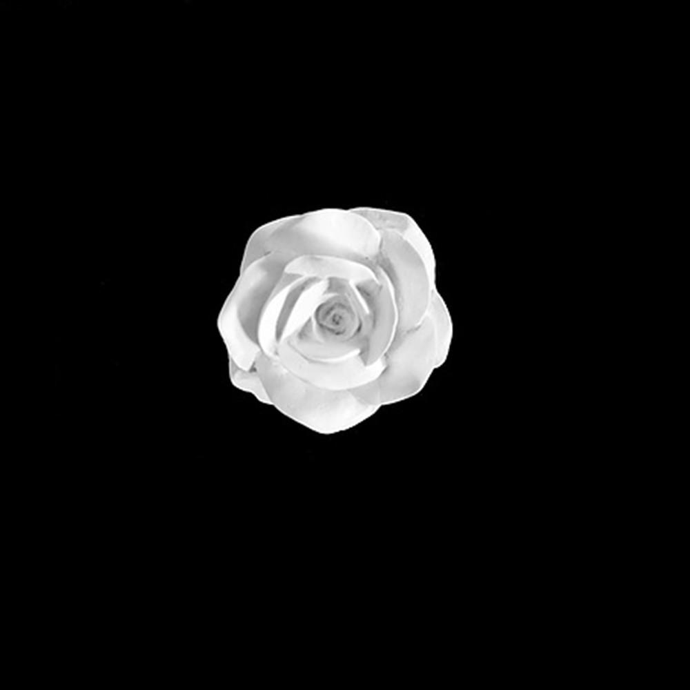 Foto 1 - Aplique floral