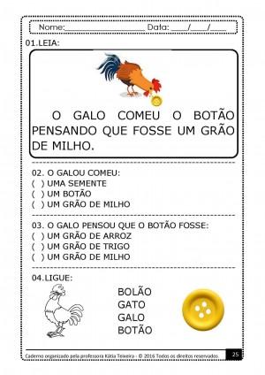 Foto4 - PROJETO DE ALFABETIZAÇÃO PALAVRAS GERADORAS COM 10 APOSTILAS