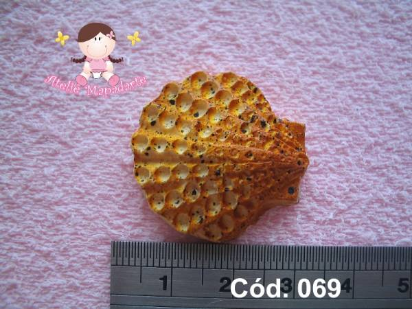 Foto 1 - Cód 069 Molde de concha
