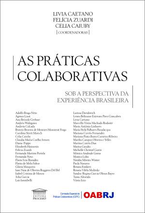 As Práticas Colaborativas Sob a Perspectiva da Experiência Brasileira
