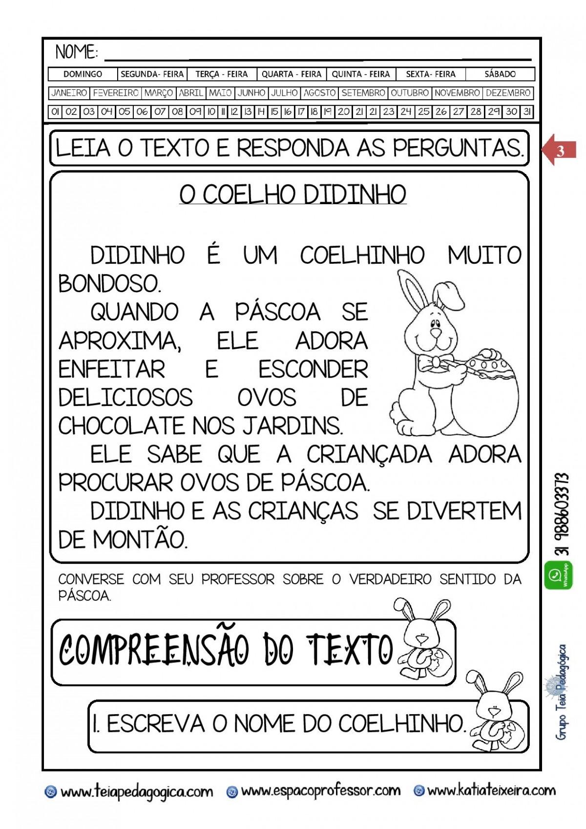 Foto2 - Caderno o Coelho Didinho com Habilidades da BNCC + Brindes