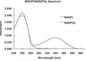 Foto4 - Espectrofotometro eppendorf