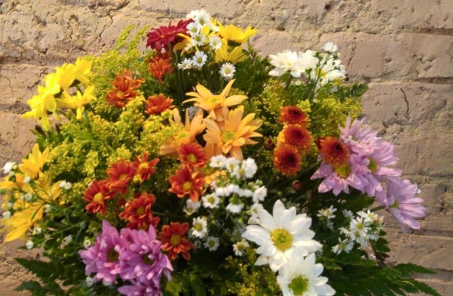 Foto 1 - Flores do Campo