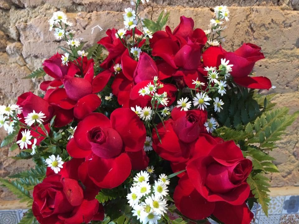 Foto 1 - Rosas Vermelhas