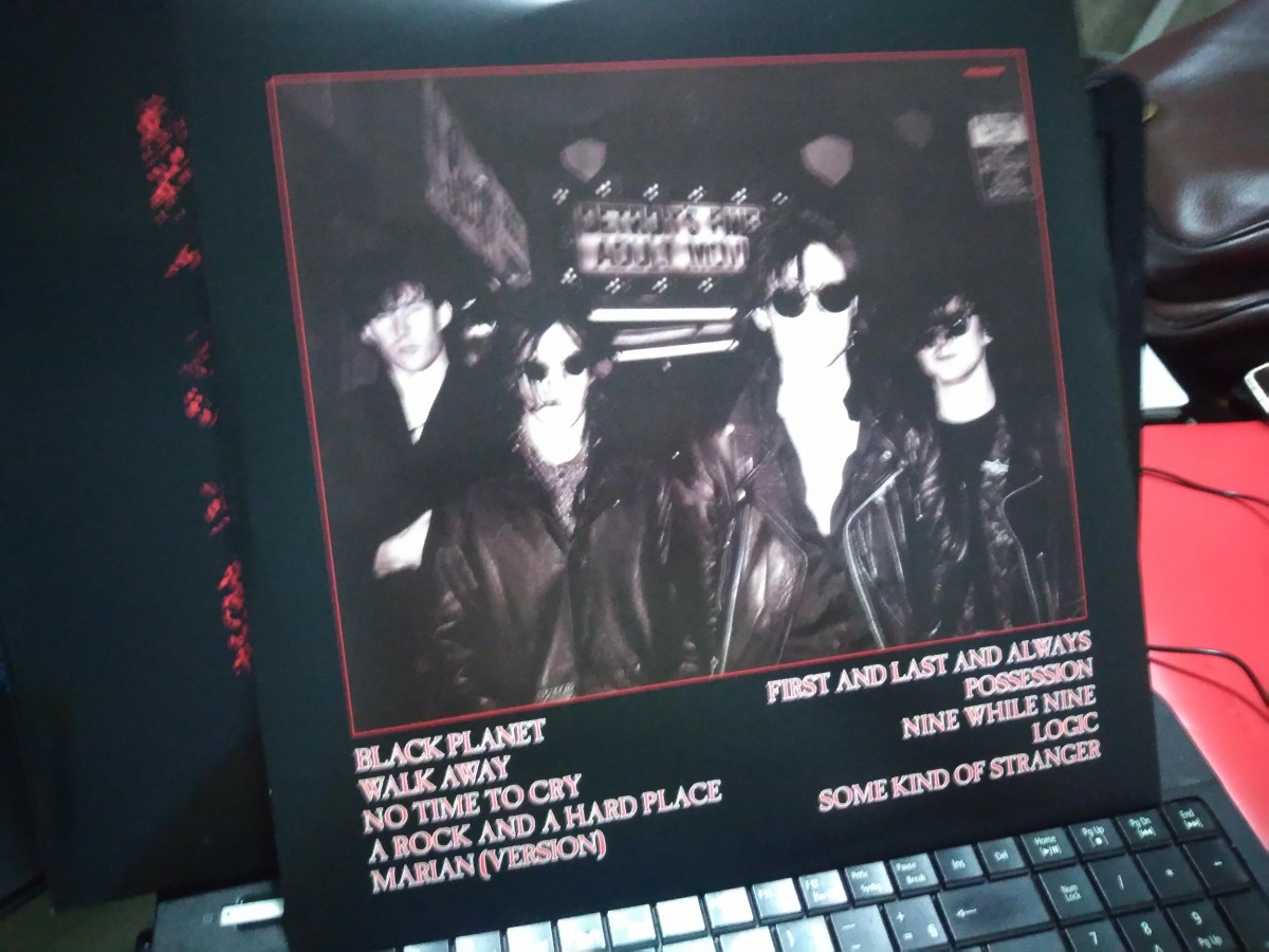 Foto3 - THE SISTERS OF MERCY, Lp 180gr First And Last And Always, 1985 capa dupla reedição 2015 importado