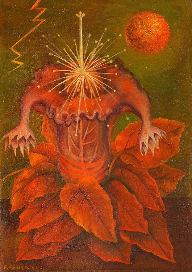 Foto 1 - A Flor da Vida Mandrágora Planta como Órgãos Sexuais Masculinos e FemininosPintura de Frida Kahlo em TELA