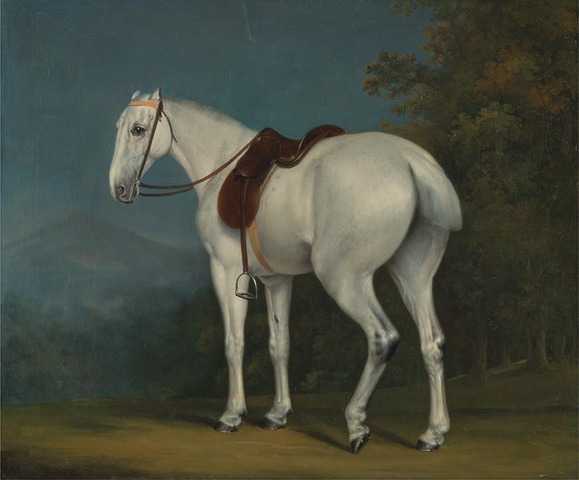 Foto 1 - A Lady's Grey Hunter Cavalo deCaça Branco Pintura de Jacques-Laurent Agasse em TELA