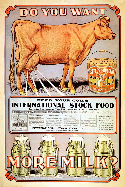 Foto 1 - Alimente sua Vaca Leiteira Leite FazendaVintage Cartaz Poster em Papel Matte