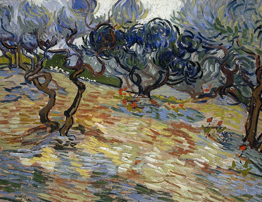 Foto 1 - Oliveiras Árvores Olivas Pintura de Vincent van Gogh em TELA
