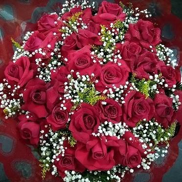 Foto 1 - Bouquet 24 rosas colombianas